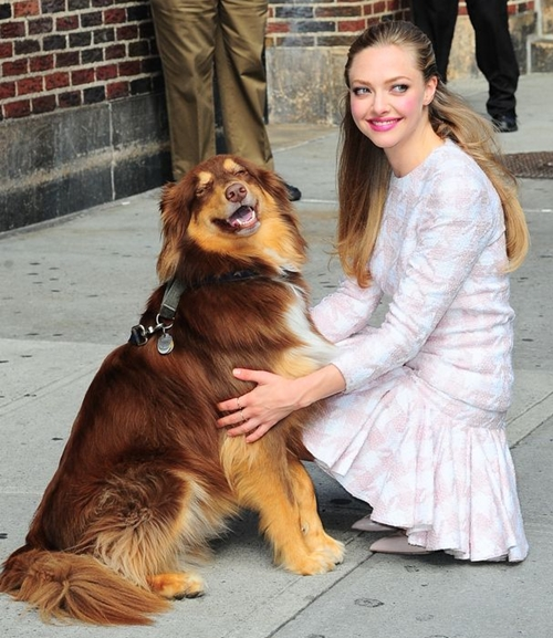 Amanda Seyfried Biography