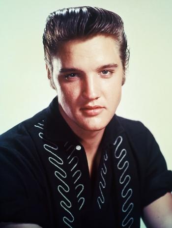 Elvis Presley Favorite Color Drink Hobbies Car Book Biography