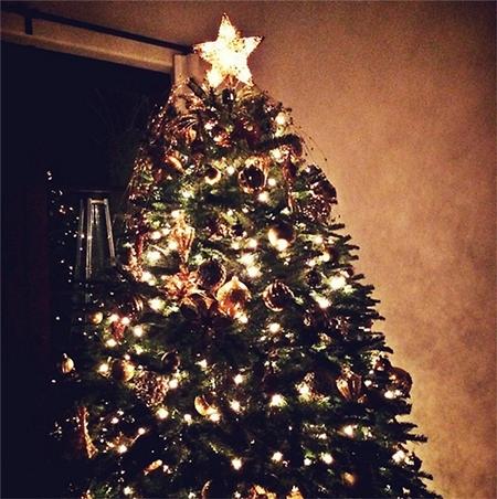 Alessandra Ambrosio Christmas Tree