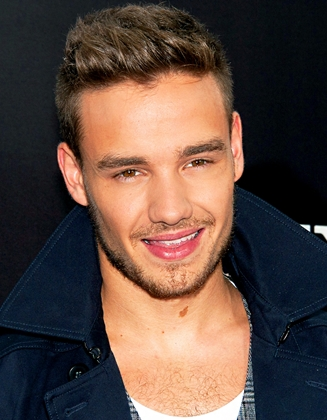 Liam Payne Favorite Things Color Book Food Hobbies Instrument Sport Bio
