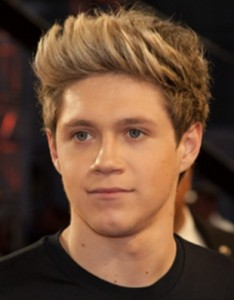 Niall Horan Favorite Color Music Food Drink Perfume Hobbies Bio