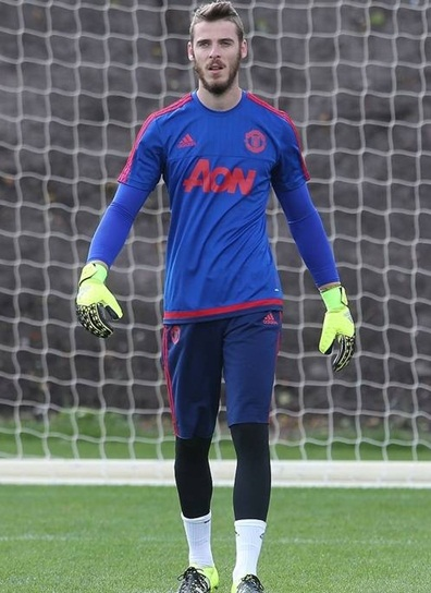 David de Gea Height Weight Stats