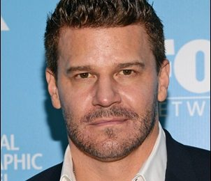 David Boreanaz Height Weight Shoe Size Measurements Facts Family Bio